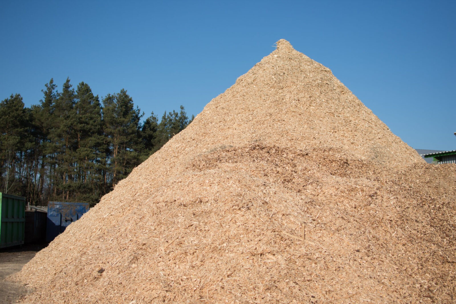Biomasa 3
