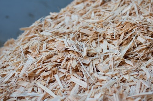 Biomasa 1